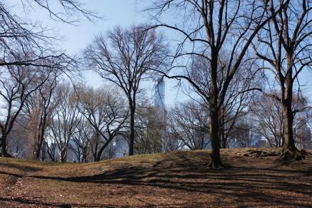 Central Parka alhaalta